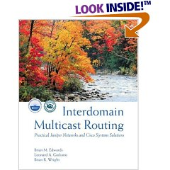 int_dom_multicast_routing